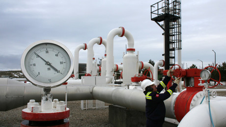 Turkey will continue buying gas from Iran despite US sanctions – Erdogan
