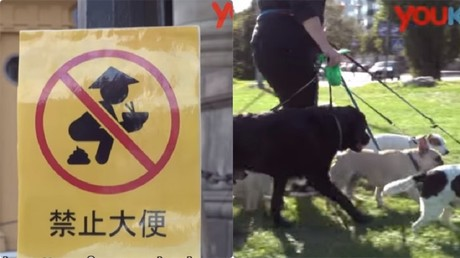 'Insincere': Beijing rejects second apology from Swedish show over Chinese tourist 'poop' jokes