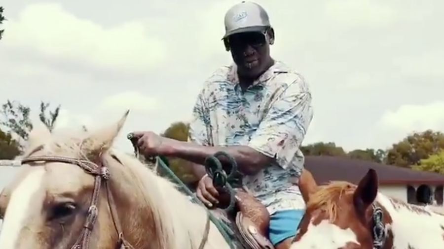'Should I be UN ambassador?' Dennis Rodman makes bizarre VIDEO on horseback