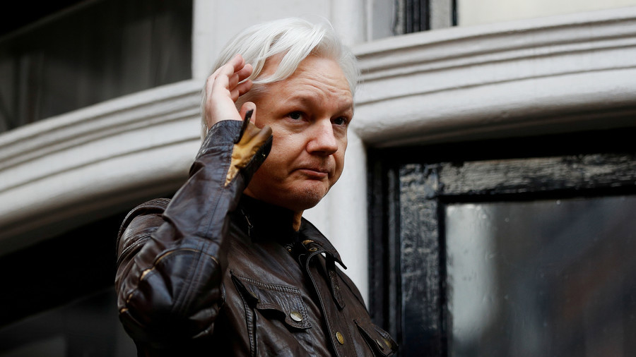 Judge orders Julian Assange to clean up after cat, pay bills