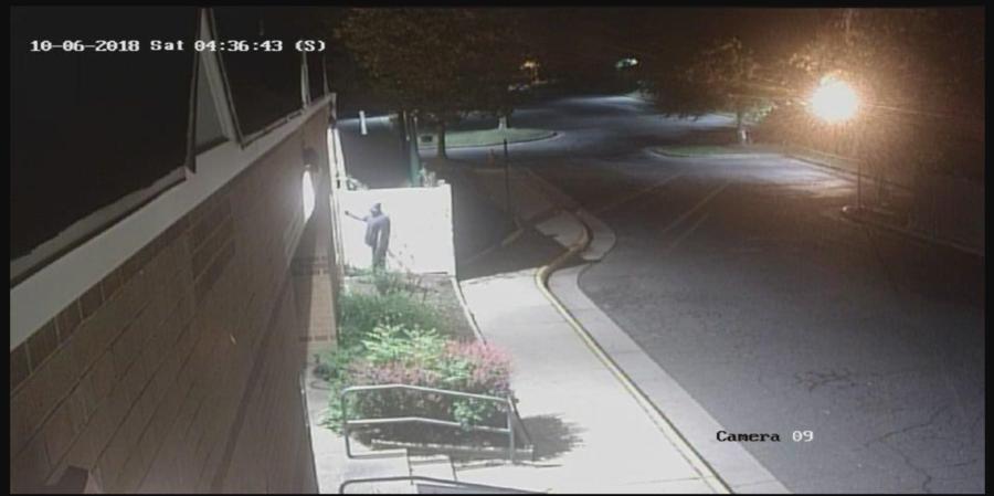 Vandal defaces Jewish center in Virginia with 19 swastikas (VIDEO)