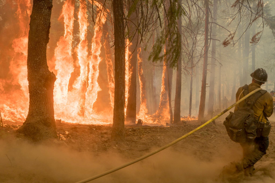 Trump threatens to cut federal aid to California over 'lousy management' of water & wildfires