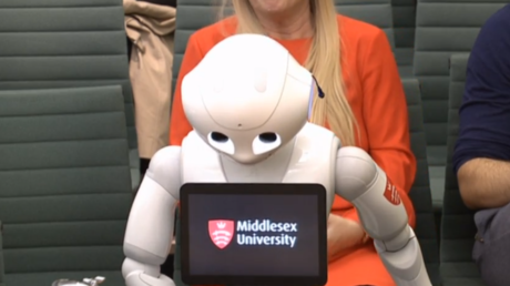 WATCH robot give evidence to parliament, outperforming 'some ministers'