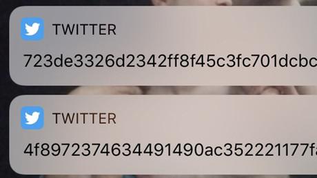 Secret message, glitch or hack? Bizarre Twitter code baffles social media (PHOTOS)