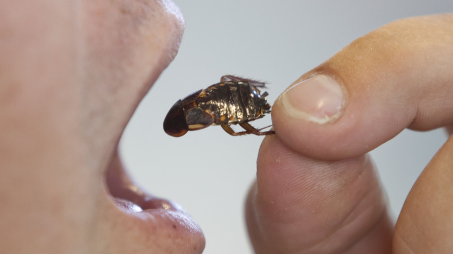 Chinese Company Forced Workers to Eat Roaches
