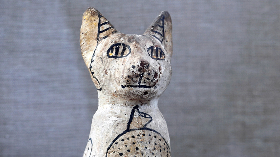 Mummified cats, scarabs, and a 4,500-year-old 'untouched' tomb unearthed in Egypt