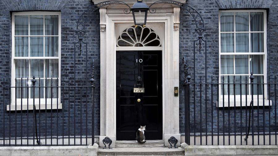 Policeman Knocks on 10 Downing Street to Let Cat In