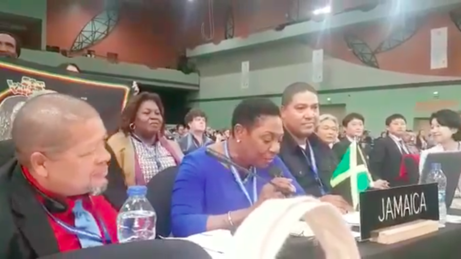 WATCH: Jamaican minister belts out Bob Marley to celebrate UNESCO's recognition of reggae