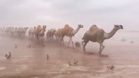 Watch the Saudi desert as you've never seen it before (VIDEO)
