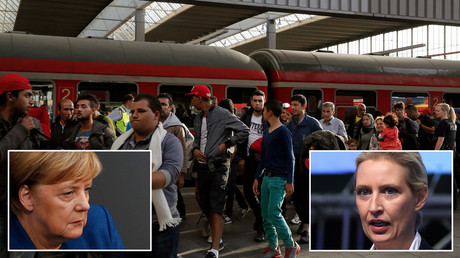 'Women dare not walk the streets': Migrant spat in Bundestag, as AfD leader lashes out at Merkel