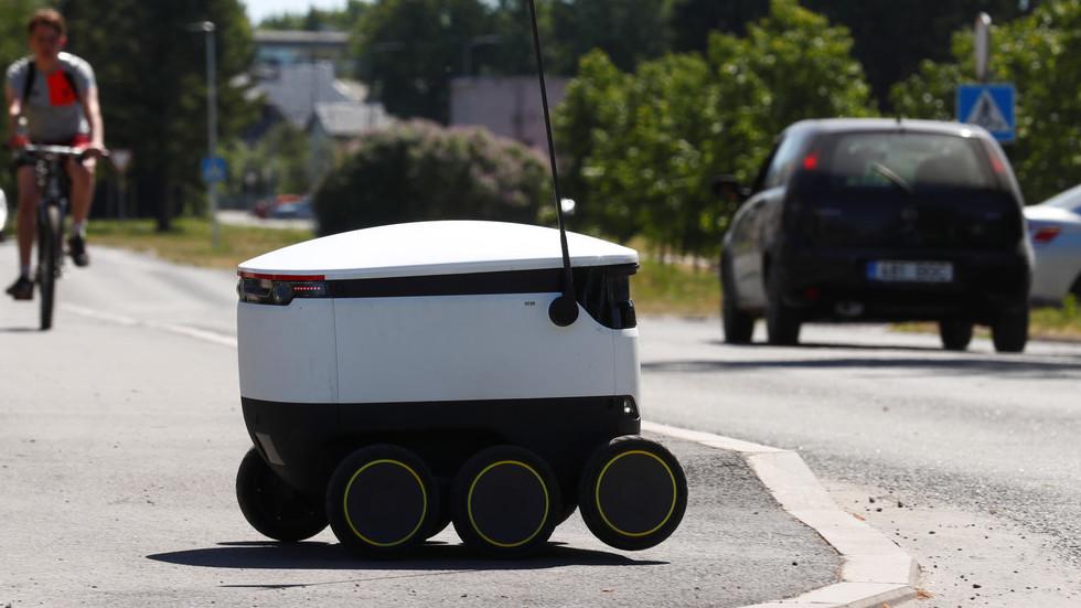 Move, slowpoke! Estonian delivery robot gets a KICK from pedestrian at crosswalk