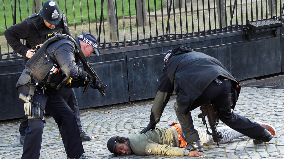 Man is Tasered by police inside the gates of Parliament