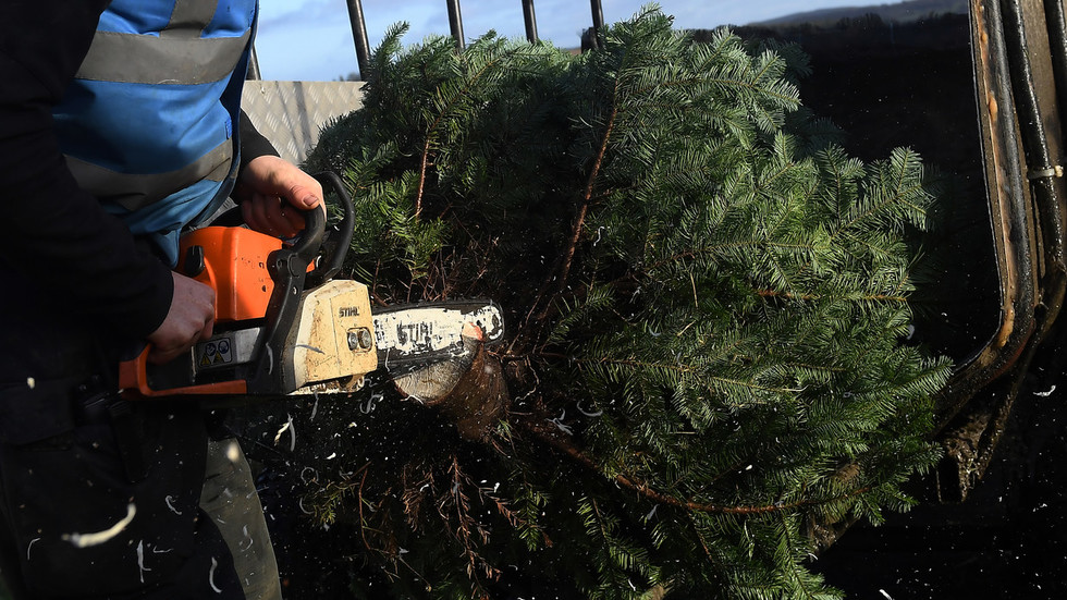 So much for reform & tolerance: Saudis open to ridicule over Christmas tree ban memo