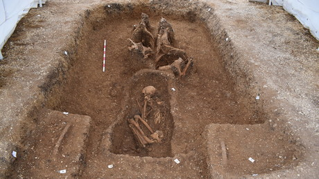 'Leaping out of the grave': Rare Iron Age chariot with horses is an 'unparalleled' find