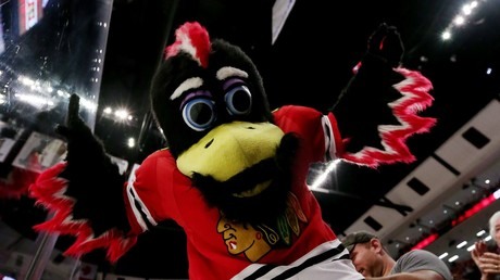 Feathers fly as Chicago Blackhawks mascot involved in punch-up with fan (VIDEO)