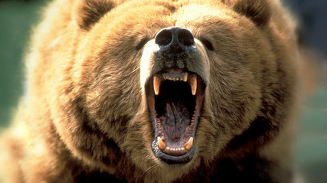 Bull market over: Alan Greenspan tells investors to 'run for cover'