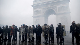 'Final outcome': France to deploy 89,000 cops as protesters plan massive Saturday demonstration