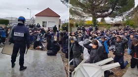 'Like execution by firing squad': VIDEOS of French students' arrest by armed police stirs OUTRAGE
