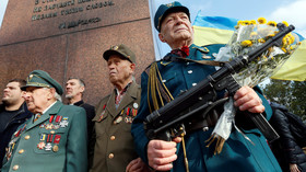 'Like denying the Holocaust': Ukraine makes post-WWII nationalist fighters as privileged as war vets