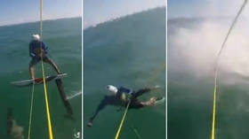 Watch Australian surfer crash into shark during kite foiling race (VIDEO)