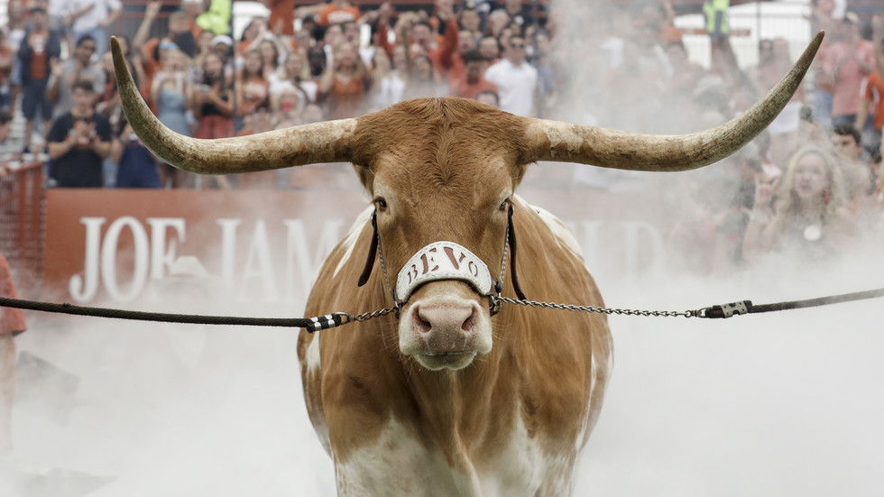 Tim Short Dodge >> Mascot madness: Huge longhorn steer charges at bulldog before US college football game (VIDEO ...