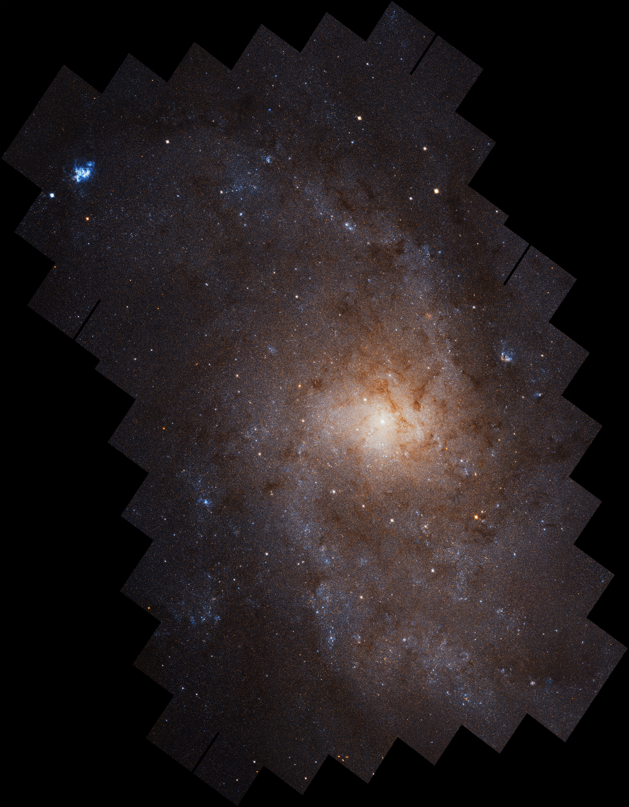 Hubblecast 115 Light: Triangulum Galaxy in unrivalled detail