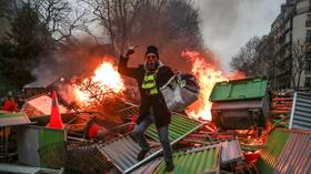 Scuffles break out as 'yellow vests' return to streets for 1st protest of 2019 (PHOTO, VIDEO)