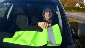 The Emerging: Yellow Vest ex-rep seeks to create political party of 'common sense'