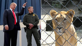 Trump Jr. put on blast for comparing border wall to ZOO FENCE