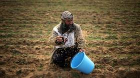 Israel accused of ruining Palestinian crops by spraying pesticides along Gaza border (VIDEO)