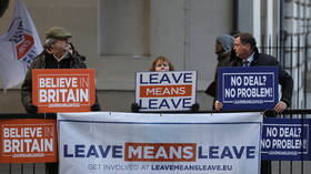 Pro-Brexit demonstrators protest outside the Houses of Parliament in London, January 11, 2019 © Reuters / Simon Dawson.
