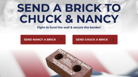 'Prove that WALLS WORK!' Trump fundraiser aims to flood Dems' offices with fake BRICKS
