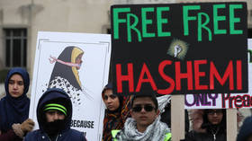 Iranian Press TV journalist released without charge after 10 days in US custody