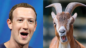 Baaad taste: Mark Zuckerberg once killed a goat and served it cold to Twitter CEO Jack Dorsey