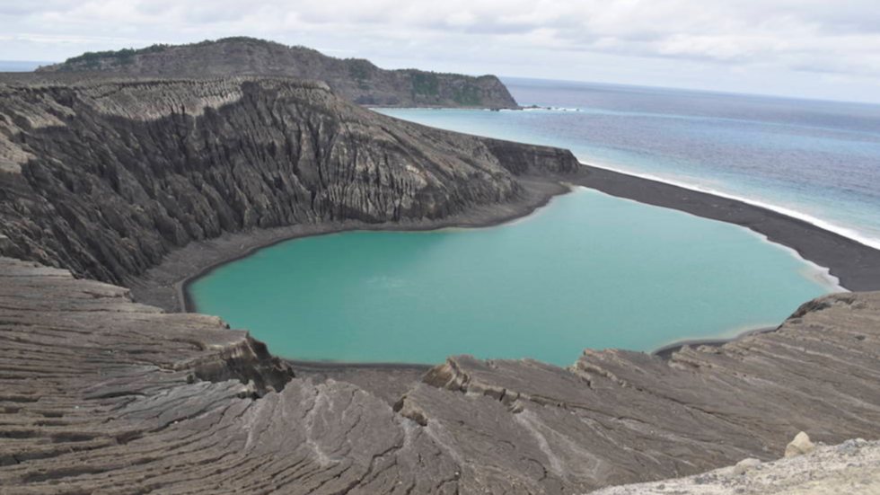 Life finds a way: 'New' Tongan island already teeming with birds and flowers (PHOTOS, VIDEOS)