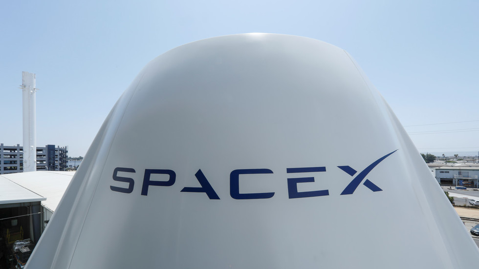 Musk's ambitious new 'Starship' project might be undone… by bird poop