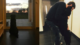'Nala is waiting for you': Emiliano Sala's sister posts moving image of striker's pining dog