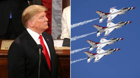 'Brilliant!' Trump applauds Democrats' Green dream to 'eliminate all planes, cars, cows & military'