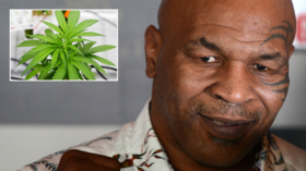 Bet that packs a punch! Mike Tyson spotted smoking FOOT-LONG joint at marijuana festival (VIDEO)