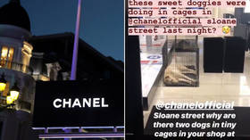 Chanel slammed for keeping dogs in 'tiny cages' at London boutique (PHOTOS)