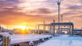 Russia's share of European gas market surges to almost 37%, dwarfing LNG imports
