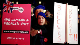 Labour to demand vote on 2nd EU ref, as shadow chancellor claims: 'We can win it'