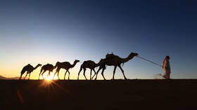 All roads lead to China: 17 Arab countries join Beijing's new Silk Road