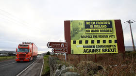 Smugglers' dreamland? UK to waive checks on goods at Irish border in no-deal Brexit