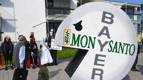 Bayer boss calls Monsanto takeover 'good idea' despite mounting lawsuits