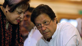 Short-fused diplomacy: Pakistani Minister calls US envoy a 'Little Pygmy' over jab at PM Khan