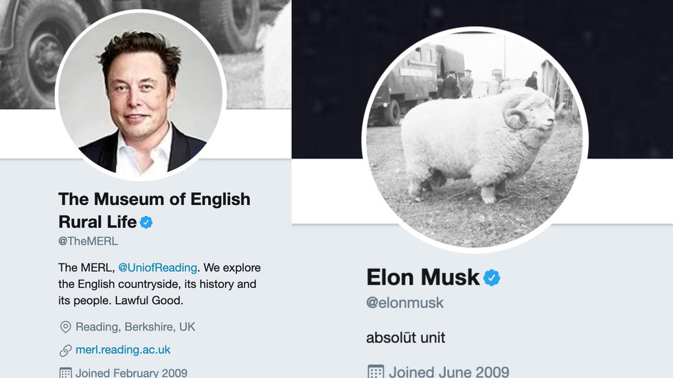 'I'm an absolute unit too': Musk revives viral 2018 ram ...