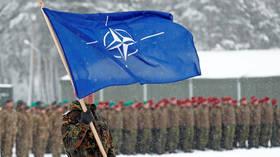 'Security risk & lawbreaker': German MP says 70yo NATO should retire