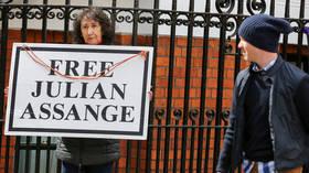 Assange in custody