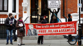 'Our property now': (Most) US lawmakers rejoice over Assange arrest